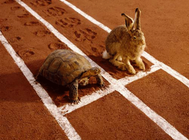 tortoise-and-hare