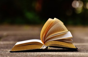 book-1738607_1920