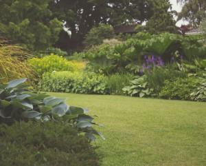 garden-300x241