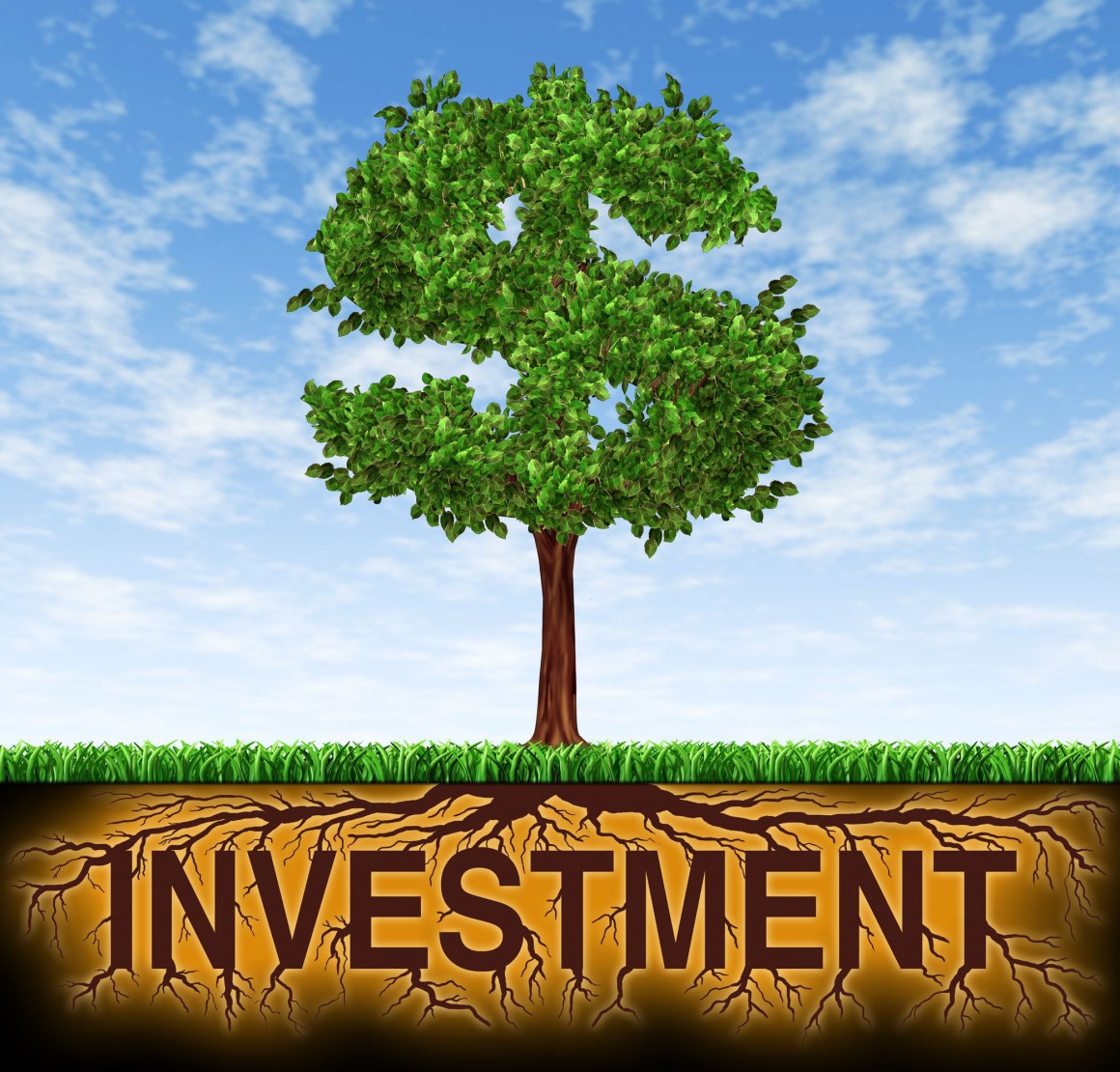 Who is right, and which investment is right for you